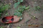 Rotten Punjabi jutti (Traditional Punjabi handmade shoe)